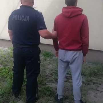 Piotrków Tryb.: Bliźniacy okradli domki letniskowe