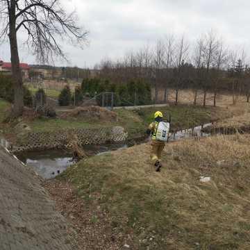 Strażacy z KSRG OSP Kamieńsk usuwali zagrożenie chemiczno- ekologiczne