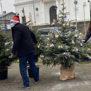 """Choinki od stowarzyszenia """"Perspektywy"""" i wicewojewody łódzkiego"""