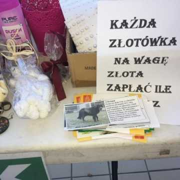 """Finał akcji """"Podaruj seniorowi domek"""""""