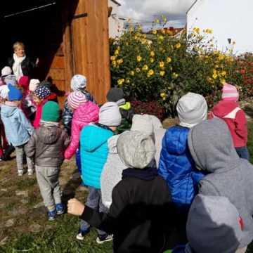 Przedszkolaki w zagrodzie