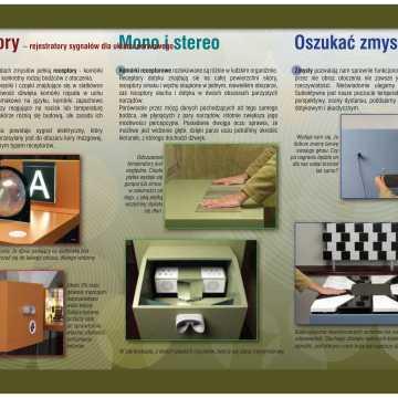 Wystawa Świat Zmysłów od 4 marca w Muzeum Regionalnym w Radomsku