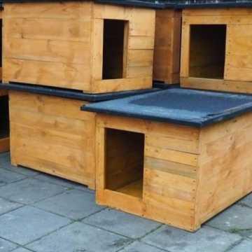 Potrzeba 1 500 zł na nowe budy dla schroniska dla zwierząt w Radomsku