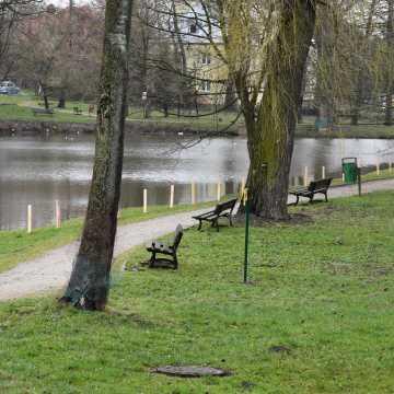 Piotrków Tryb.: Startuje remont parku Belzackiego