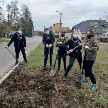 Harcerska łąka kwietna przy ul. Glinianej w Radomsku