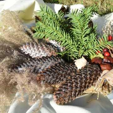 Zamiast wiązanki na Wszystkich Świętych, przygotuj eko-stroik. Zachęcają do tego studentki Uniwersytetu Trzeciego Wieku