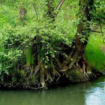 Era Travel na weekend: Wycieczka szlakiem uroków rzeki Pilicy