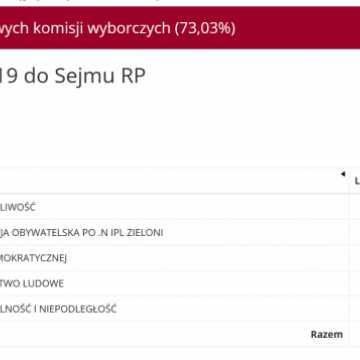 Wyniki wyborów w powiecie radomszczańskim