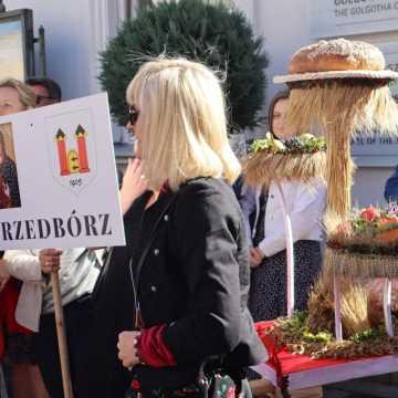 Mieszkańcy Przedborza na Dożynkach Jasnogórskich w Częstochowie