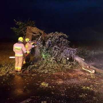Powalone drzewa i uszkodzone dachy. Skutki wtorkowej burzy w Radomsku i pow. radomszczańskim