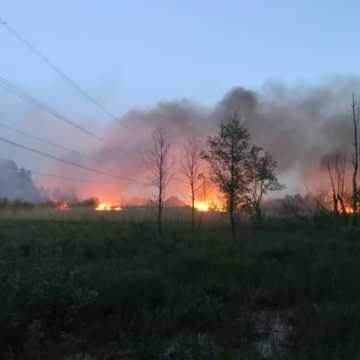 Spłonęło 5 hektarów traw