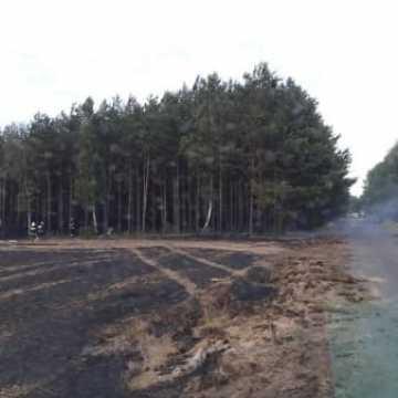 Pożar zboża między Przerębem a Bartodziejami