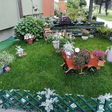 Jedyny taki ogródek w Radomsku