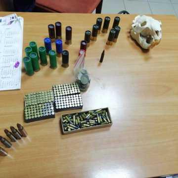 27-latek posiadał nielegalny arsenał broni, trofea myśliwskie i jastrzębia