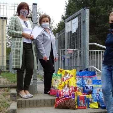 Społeczność szkoły w Szczepocicach wsparła schronisko dla bezdomnych zwierząt w Radomsku