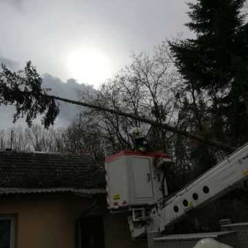 7 interwencji straży pożarnej z powodu silnego wiatru