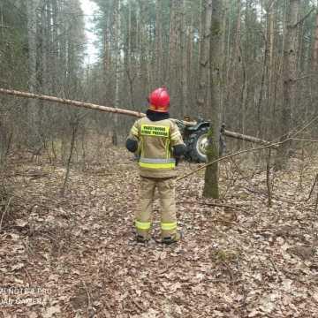 Lipie: Drzewo upadło na mężczyznę