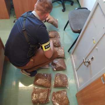 Radomszczanin przewoził tytoń bez akcyzy. Został zatrzymany