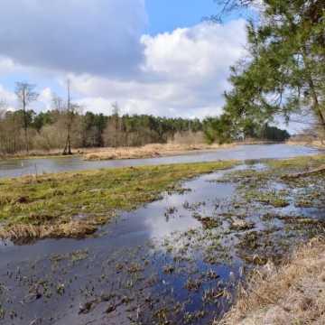 Foto Pozytyw w Załęczańskim Parku Krajobrazowym